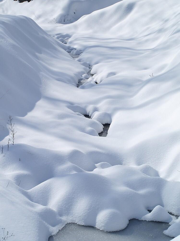 Snowy Valley by besoriginals