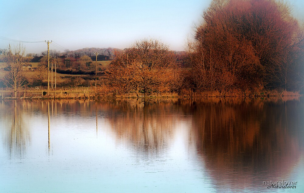 Peace & Tranquility by naturelover