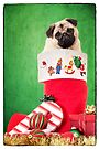 Christmas Stocking Pug by Edward Fielding