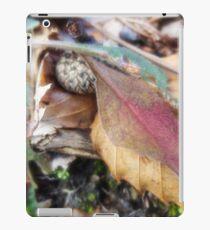 Acorn cap iPad Case/Skin