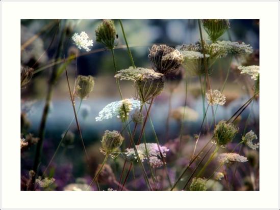 Nature's Palette by Kitsmumma