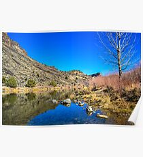 Rio Grande River, NM Poster