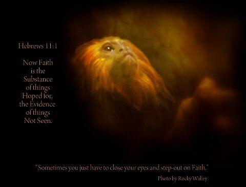 FAITH by RockyWalley
