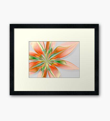 Orange Burst Framed Print