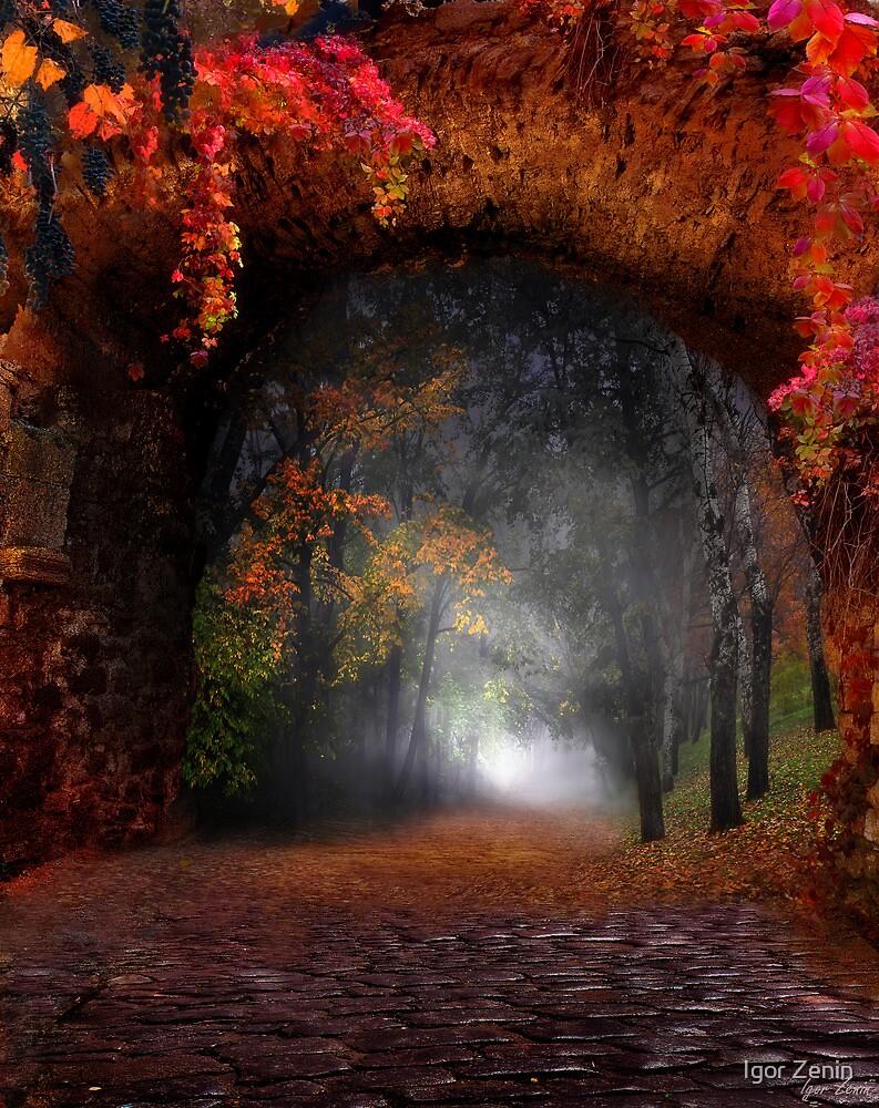 Autumn Road by Igor Zenin