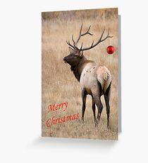 Merry Christmas 2012 Greeting Card