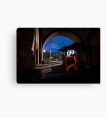 Light Creatures of Brooklyn Canvas Print