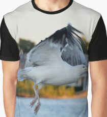 Larus Occidentalis - Western Gull | Center Moriches, New York  Graphic T-Shirt