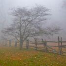 Through The Fog by Fred Moskey