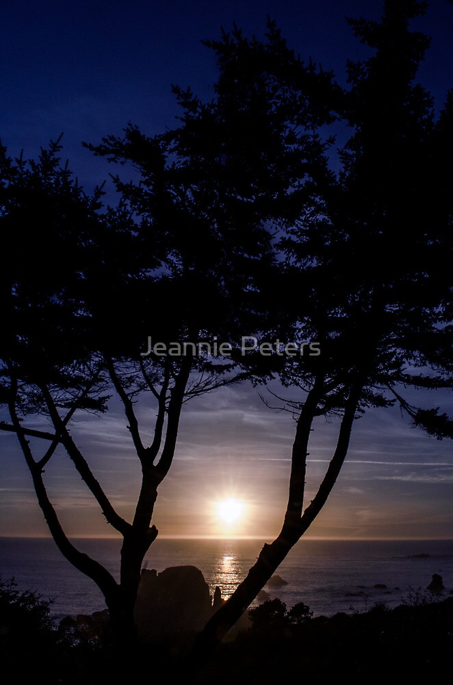 Beautiful Sunset by Jeannie Peters