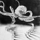 playful octopus  by JordanBlumer