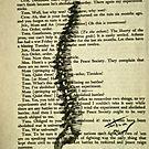 spine  by JordanBlumer
