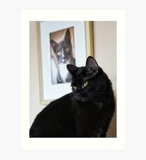 Cat Picture Art Print