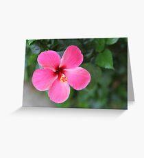 Philippine Flower Greeting Card