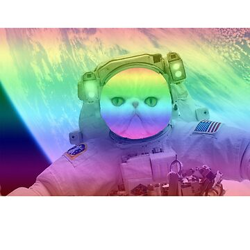 Rainbow Space Cat by BeggarsAll