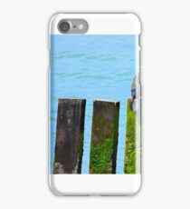 Sleeping Cormorants iPhone Case/Skin