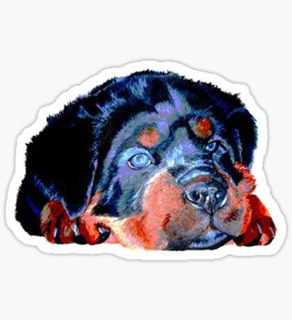 Pop Art Rottweiler Puppy Isolated Sticker