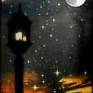 Magic Night © by Dawn Becker