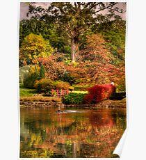 Secret Garden - Mount Wilson  # 7 , NSW Australia - The HDR Experience Poster