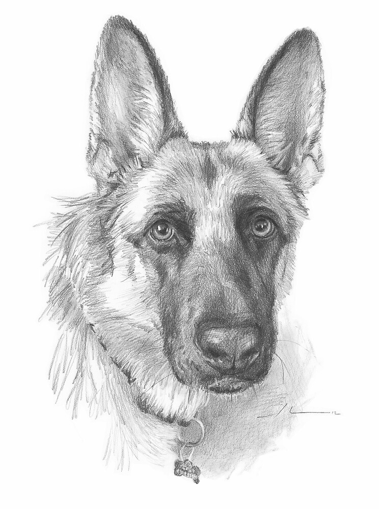 """German shepherd drawing"" by Mike Theuer 