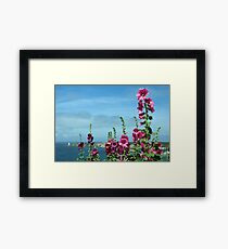Beautiful pink flowers by the river estuary, Le Conquet, Brittany, France Framed Print