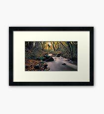 SILKY STREAM Framed Print