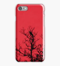 The Raven (Available in iPhone, iPod & iPad cases) iPhone Case/Skin