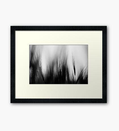 in my dreams II Framed Print