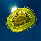 Kiwi Fall by Edward Perry
