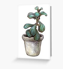 Succulent plant in pot Greeting Card