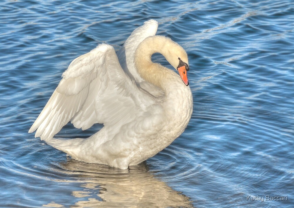 Angel Swan by Kathy Baccari