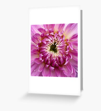 So Close (available in ipad case) Greeting Card
