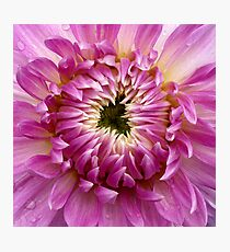 So Close (available in ipad case) Photographic Print