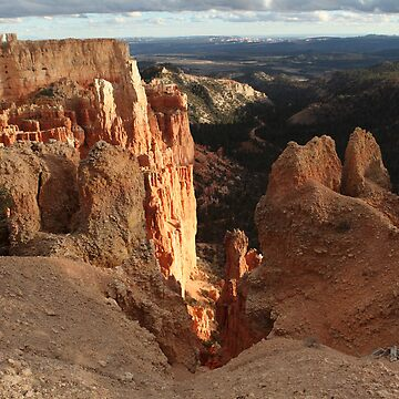 Canyonlands National Park by JudsonJoyce