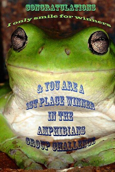 Amphibians Banner Challenge by Paul  Donaldson