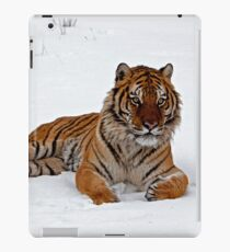 Sberian tiger lying in the snow iPad-Hülle & Skin