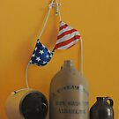 American Jugs by marcelfineart