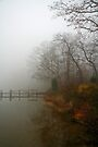 Fall Fog by Eileen McVey