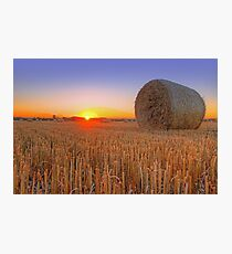 Bales at Sunset 1 Photographic Print