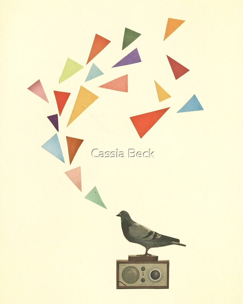 Pigeon Radio by Cassia Beck