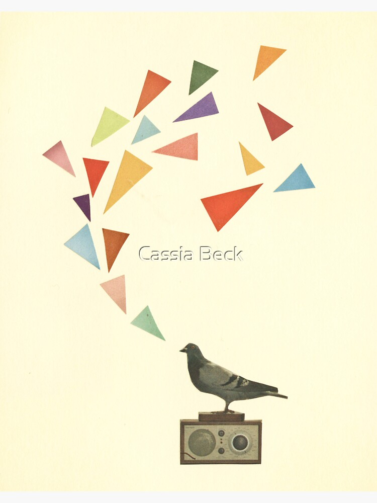 Pigeon Radio by Cassia