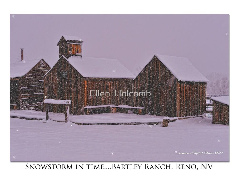 """Snowstorm in time"" Bartley Ranch, Reno, NV by Ellen  Holcomb"