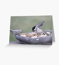Only One Little Leg Greeting Card