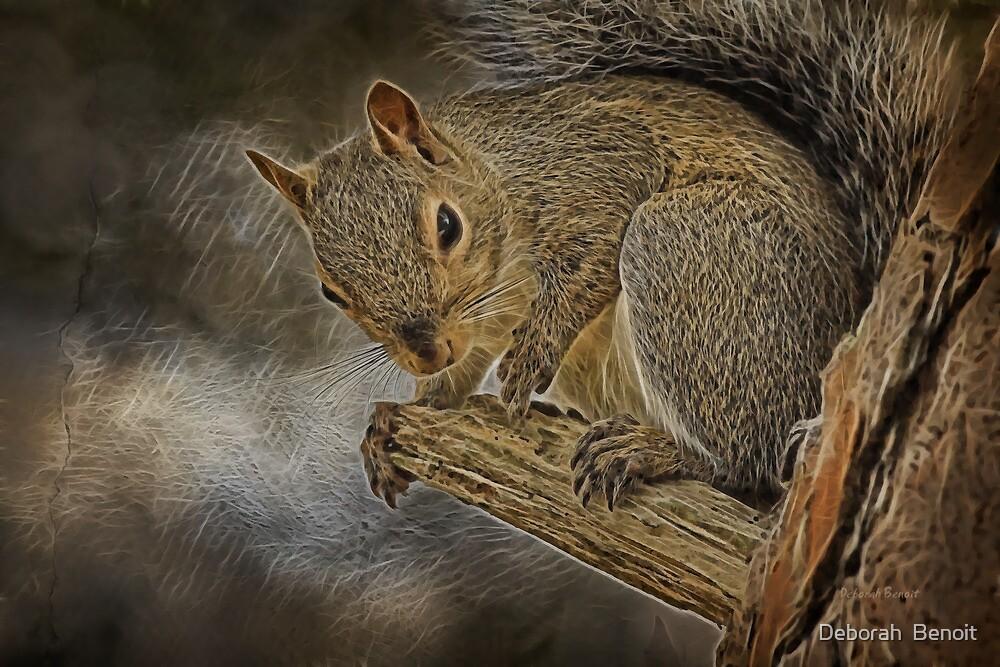 Squirrel Pose by Deborah  Benoit