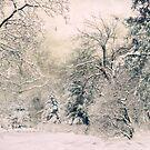 Snow White by Jessica Jenney