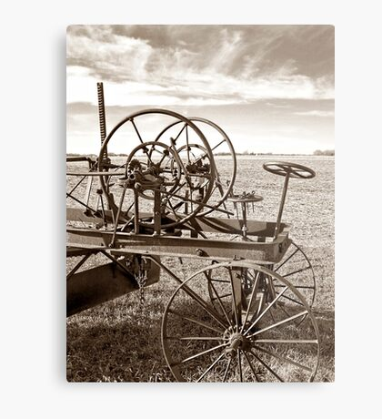 Plains of the Past Metal Print