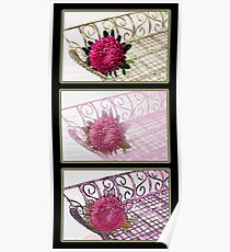 Three Trays Aster Collage  Poster