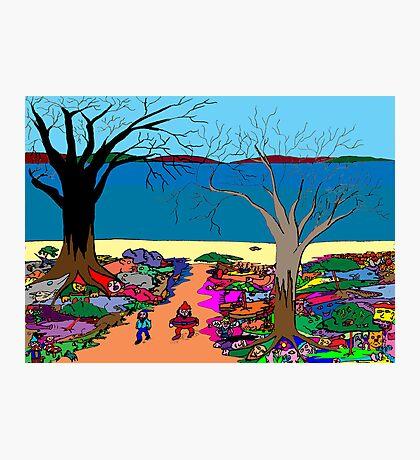 Gnomonic Landscape Photographic Print