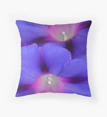 Purple and Pink Colored Morning Glory Flowers Closeup Throw Pillow