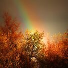 GOLD AT THE END OF THE RAINBOW by leonie7